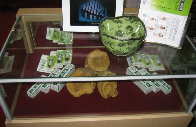 传统药博览会展览品,2009年